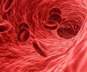 vaisseaux sanguins, cariovasculaire, coeur