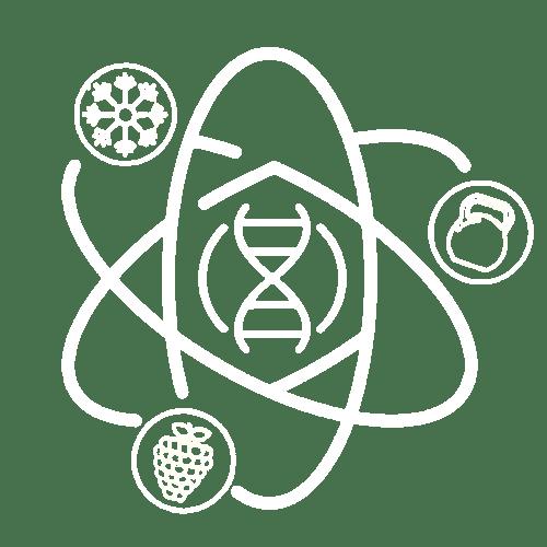 Logo homeorhesis Coaching
