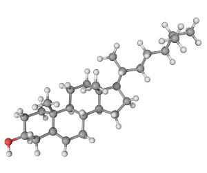 Cholesterol molécule