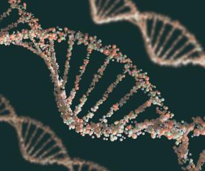 La création de protéines ADN ARN